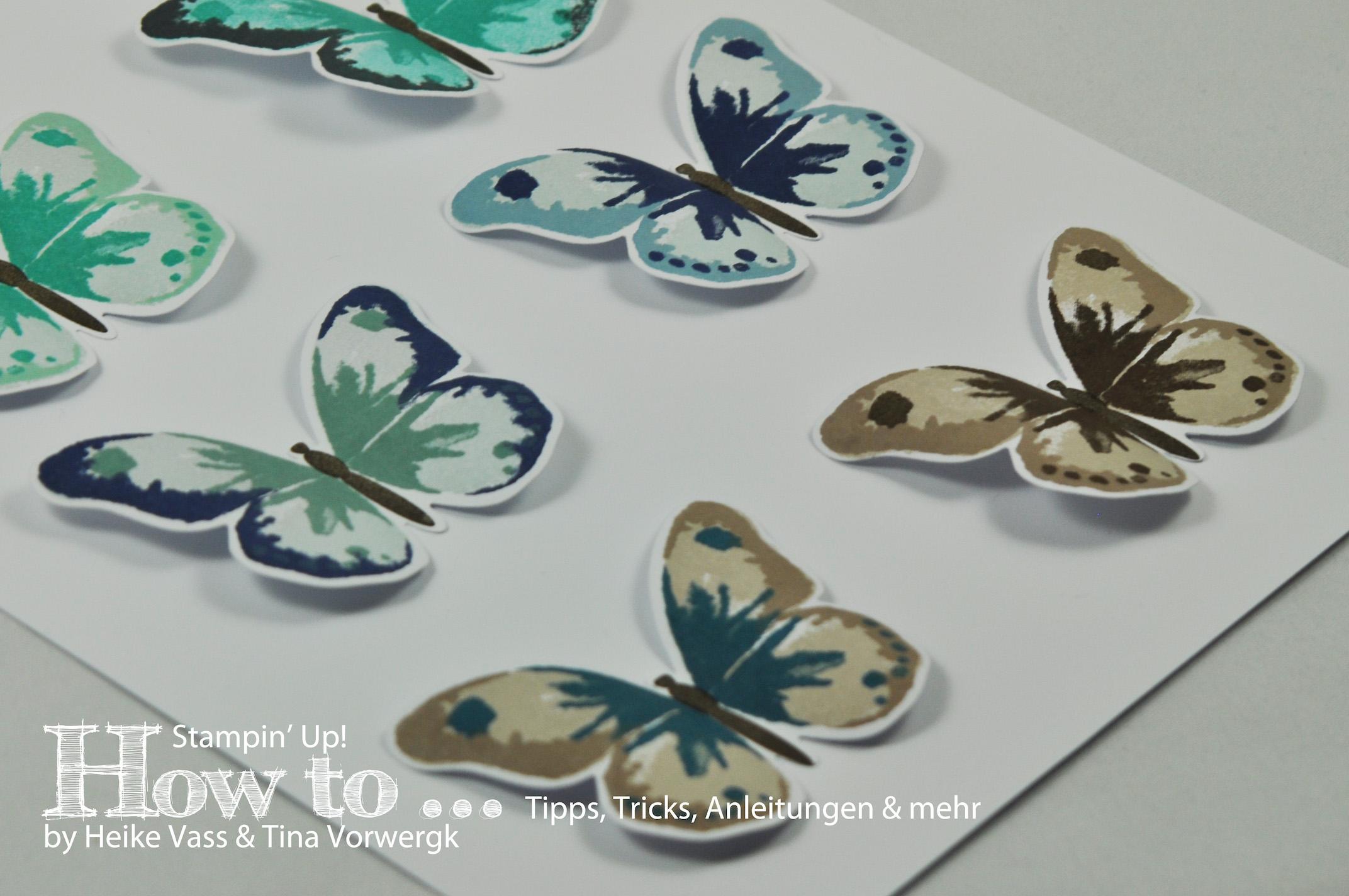 How to… Watercolor Wings Farbkombinationen