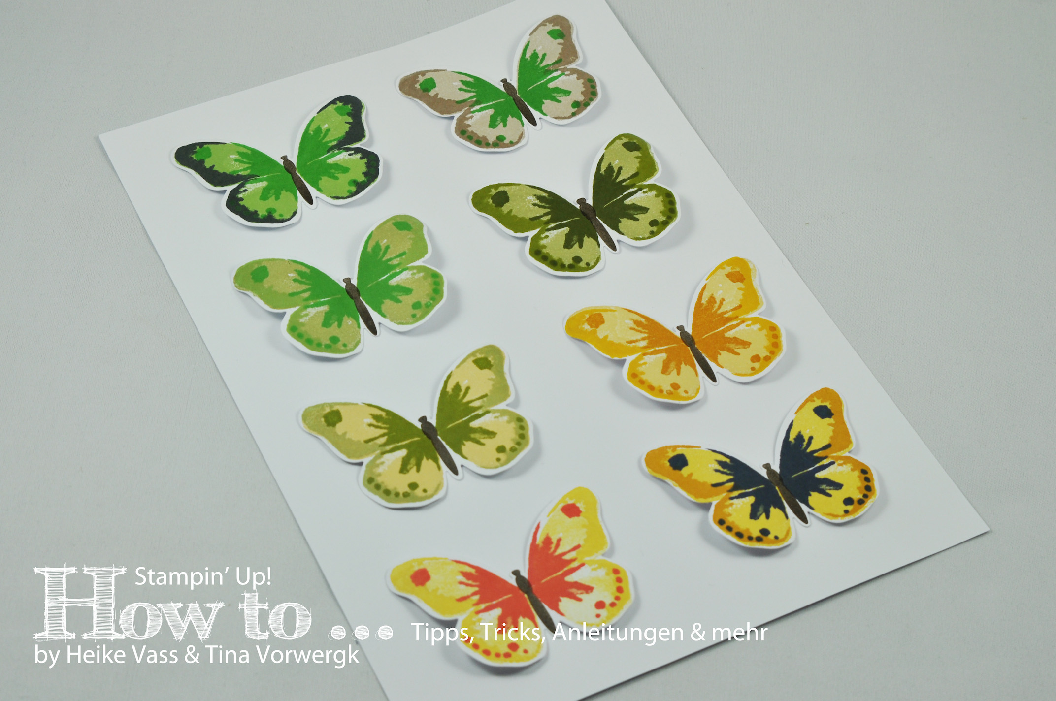 How to… Watercolor Wings Farbkombinationen