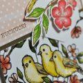 born2stamp STAMPIN' UP! Stempelnd durchs Jahr - Frei wie ein Vogel - DSP Vogelgarten - Stanzformen Raffiniert bestickte Rahmen