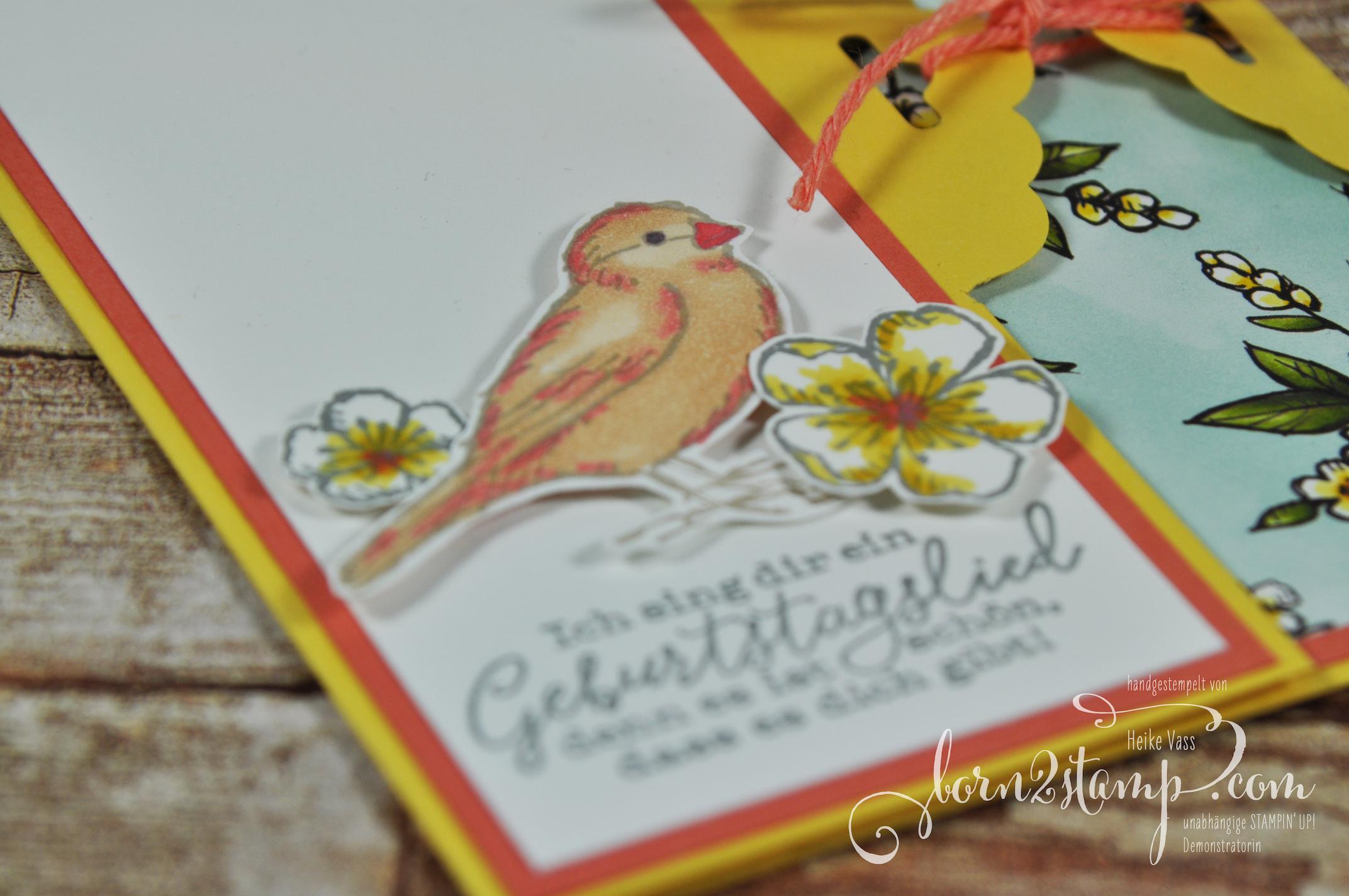 born2stamp STAMPIN' UP! Stempelnd durchs Jahr – Geburtstagskarte – Frei wie ein Vogel – Stampin' Blends – DSP Vogelgarten 2
