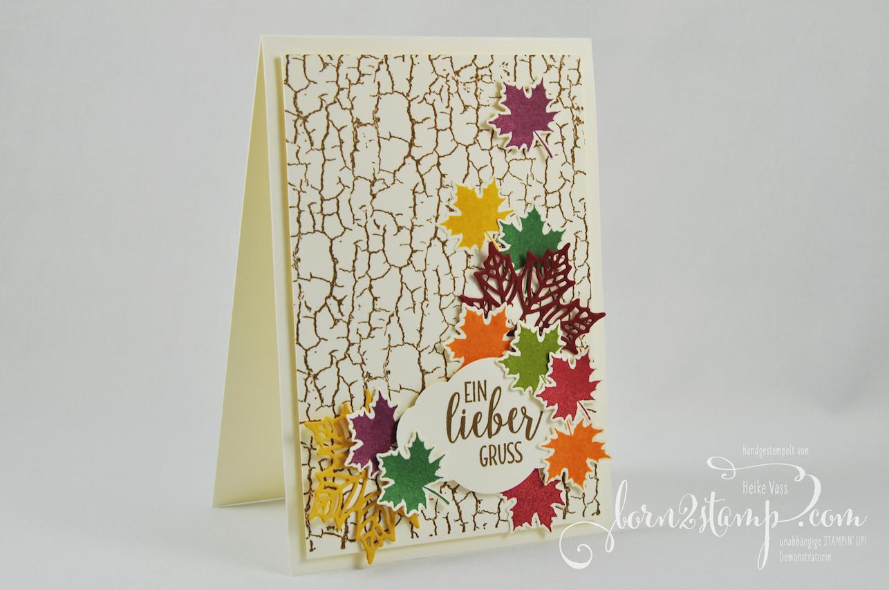 born2stamp INKSPIRE_me STAMPIN' UP! Karte – Crackle Paint – Landleben – Jahr voller Farben – Zier-Etikett 1