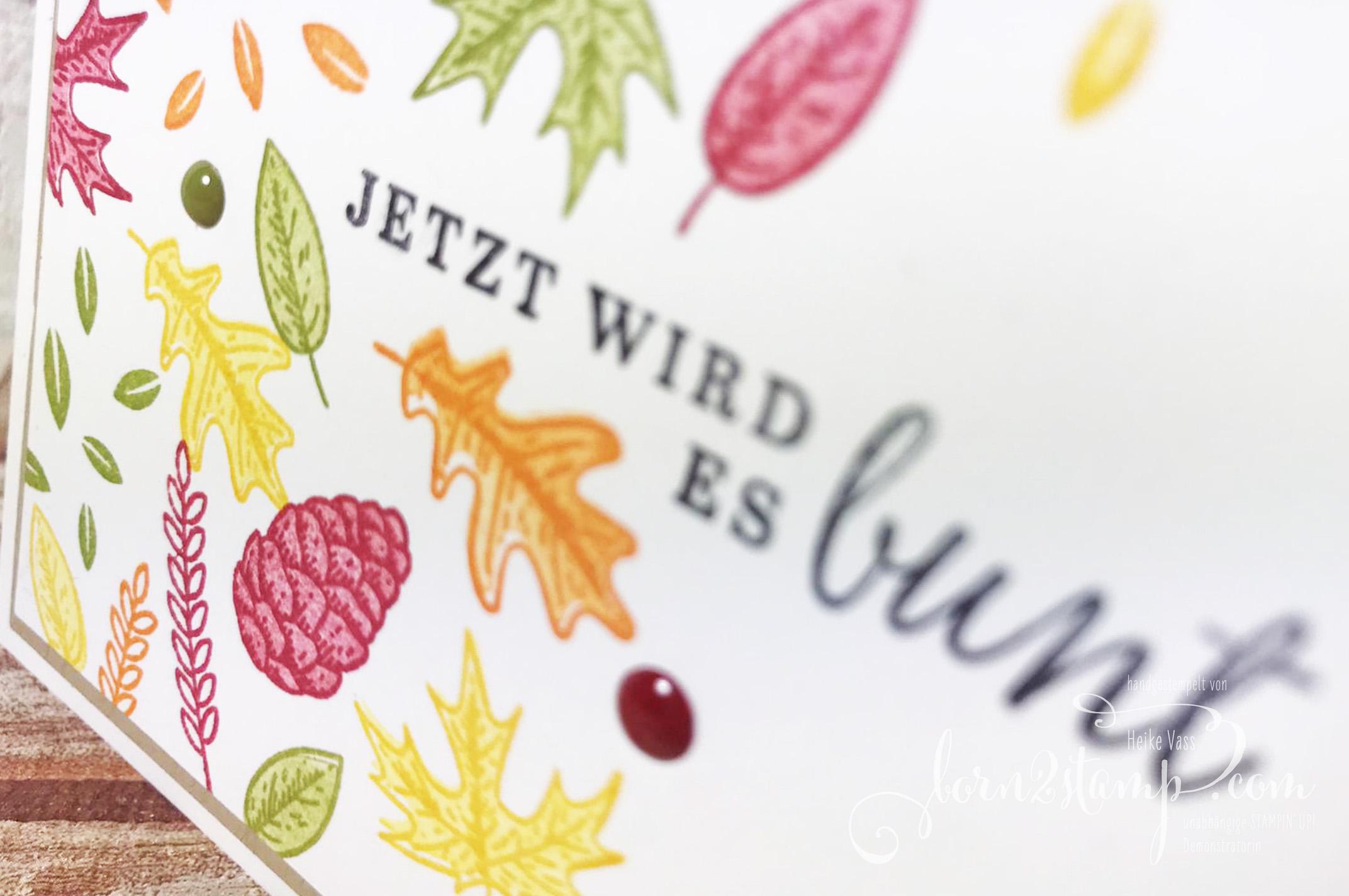 born2stamp Stempelnd durchs Jahr STAMPIN UP – Herbst – Schoener Herbst